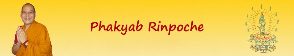 Phakyab Rinpoche